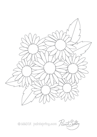 Aster Flower Adult Coloring Page