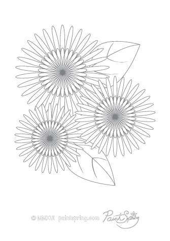 Dahlia Flower Adult Coloring Page