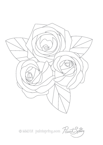 Detailed Roses Adult Coloring Page