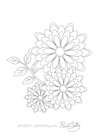 Gerbera Flower Adult Coloring Page