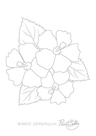 Hibiscus Flower Adult Coloring Page
