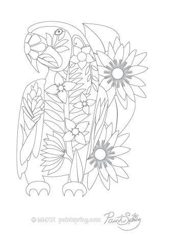 Macaw Adult Coloring Page