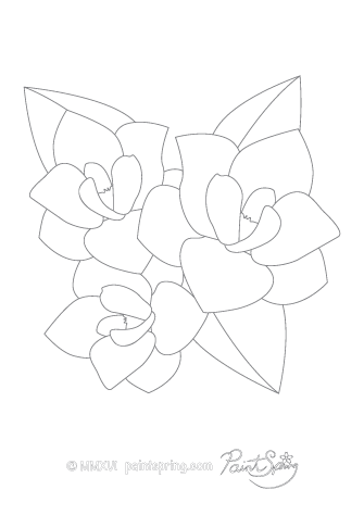 Magnolia Flower Adult Coloring Page