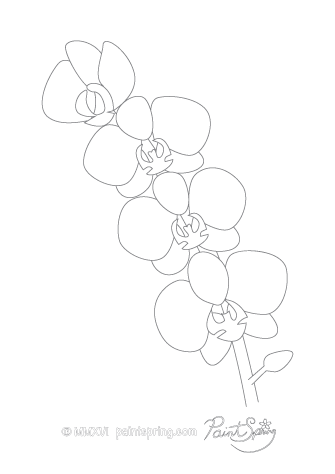 Orchid Flower Adult Coloring Page