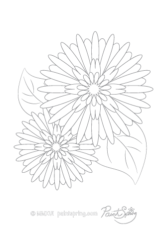 Rudbeckia Flower Adult Coloring Page