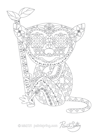 Tarsier Adult Coloring Page