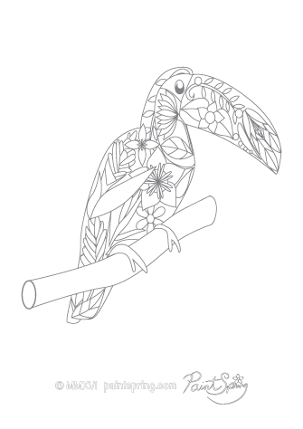 Toucan Adult Coloring Page